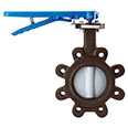 Link to Eurofly S/S Butterfly Valves page